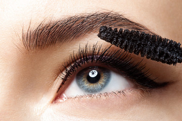 FototapetaClose-up of make-up eye with long lashes with black mascara