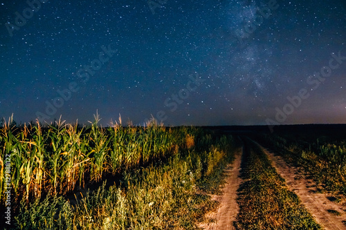 Poster de jardin Nuit Starry sky above the corn field