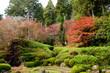 滋賀県 石山寺の紅葉