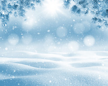 Winter Bright Background. Christmas Landscape With Snowdrifts And Pine Branches In The Frost.