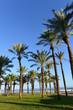 Torremolinos - Provinz Malaga an der Costa del Sol