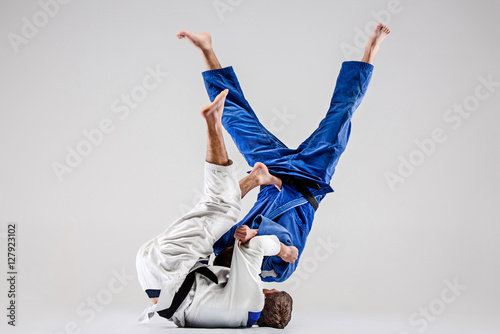 The two judokas fighters fighting men Wallpaper Mural