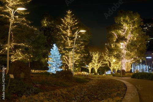Papiers peints Jardin Winter Illumination Near Tokyo Midtown
