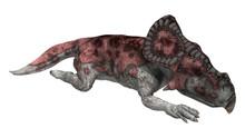 3D Rendering Dinosaur Protocer...