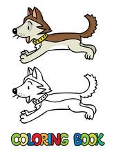 Funny Little Husky Dog. Colori...