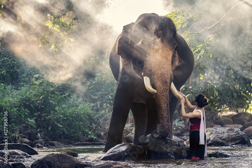 Pretty girl in traditional thai costumes touching elephant's