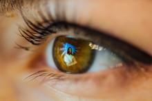 Jesus Christ Icon Reflected On Eye