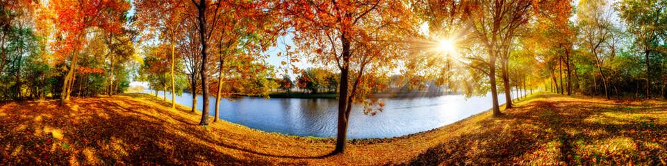 FototapetaLandschaft im Herbst, sonniges Panorama am Waldrand mit Blick auf einem Fluss