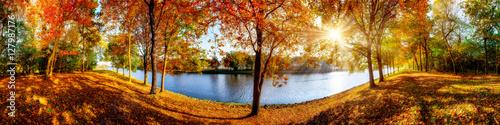 obraz lub plakat Landschaft im Herbst, sonniges Panorama am Waldrand mit Blick auf einem Fluss