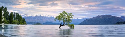 Obraz na plátne Lake Wanaka Panorama