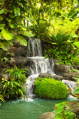 Fototapeta Waterfall in tropical garden