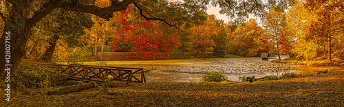 Foto op Aluminium Herfst Autumn scene at the lake in park. Lipnik (Teketo) park, Nikolovo village area, Ruse district, Bulgaria, 7frame.