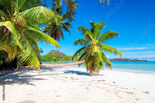 Foto op Canvas Tropical strand Tropical beach