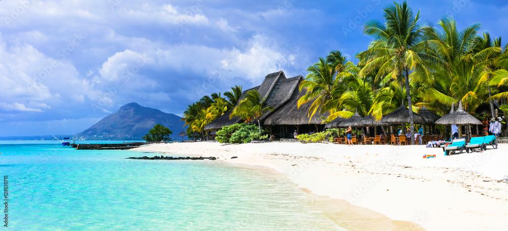 Fototapety, obrazy: amazing white beaches of Mauritius island. Tropical vacation