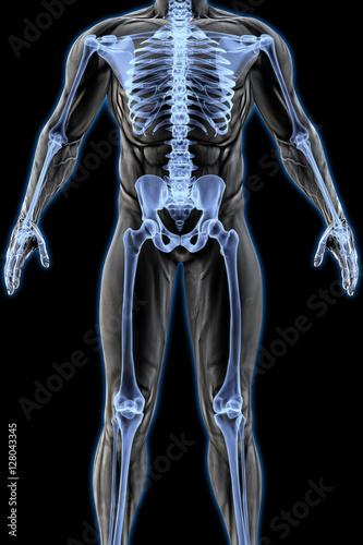 man\'s body under X-rays. 3D illustration. – kaufen Sie diese ...