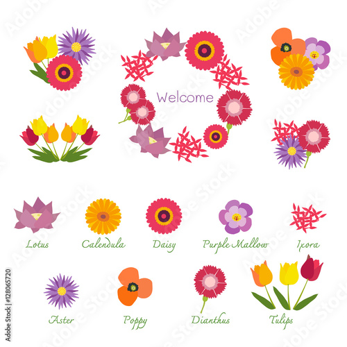 Tropical Flowers Isolated With Names Showing In Bouquets