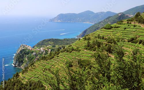 Fotobehang Liguria Paysage de la côte Ligure