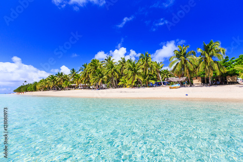 Photo sur Toile Océanie Beach on a tropical island with clear blue water. Dravuni Island, Fiji.