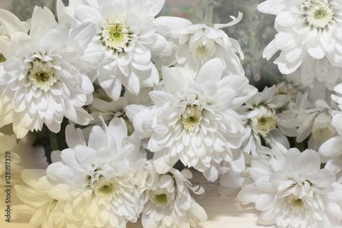 group of white flower on wooden desk,white flower have green leaf,green leaf make oxygen,copy space #128097378
