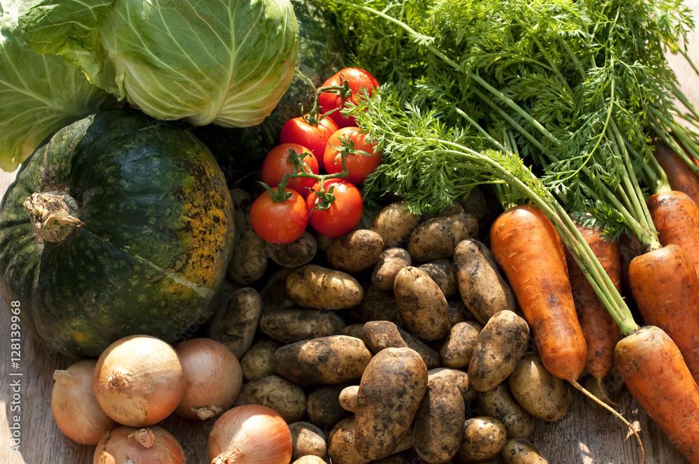 Fototapety, obrazy: 収穫した野菜