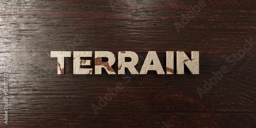 Fotografie, Obraz  Terrain - grungy wooden headline on Maple  - 3D rendered royalty free stock image