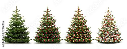 Fototapeta Weihnachtliche Tannenbäume obraz