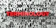 TERMINOLOGY -  Red text on typography background - 3D rendered royalty free stock image. This image can be used for an online website banner ad or a print postcard.