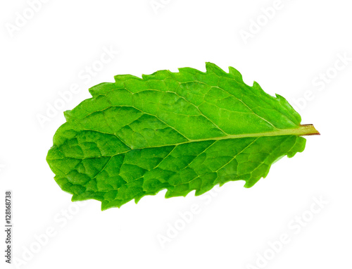 mint leaf isolated on white background #128168738