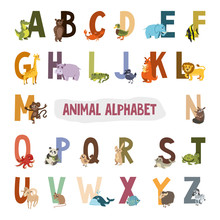 English Alphabet With Animals. Vector Illustration. Pictures For