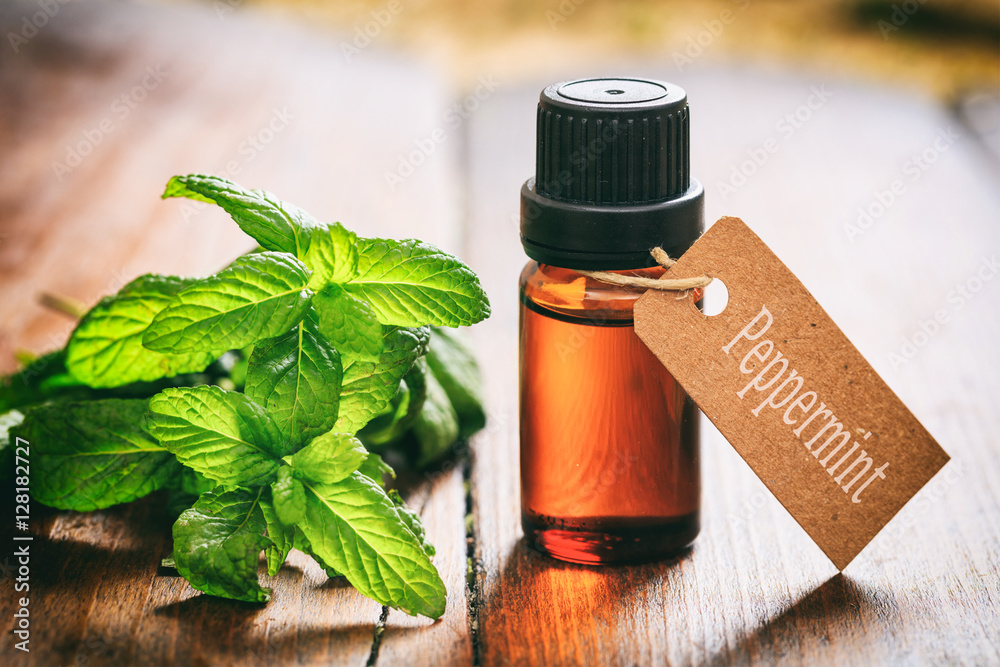 Fototapety, obrazy: Fresh peppermint and oil on wooden background