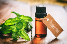 Fresh Peppermint And Oil On Wo...