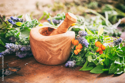 Fototapeta Variety of herbs and mortar on wooden background obraz