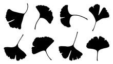 Ginkgo Leaf Silhouettes