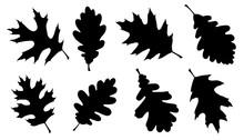 Oak Leaf Silhouettes