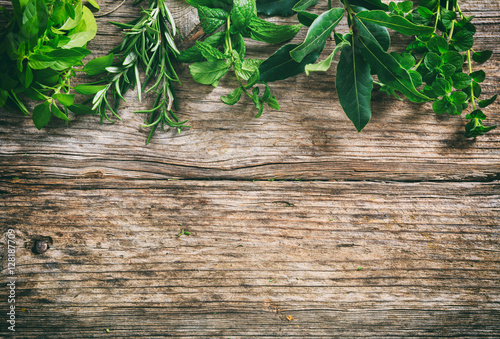 Variety of herbs on wooden background, top view, copy space Canvas Print