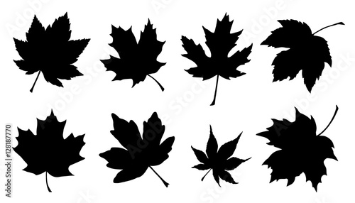 maple leaf silhouettes Fotobehang