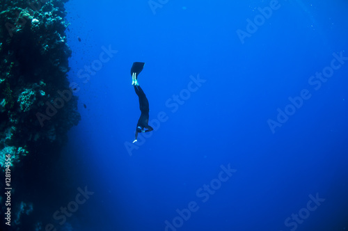 Spoed Foto op Canvas Duiken Freediver moves underwater along coral reef