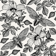 Cicada, Butterflies, Moths, Insect. Flowers Seamless Pattern. Blooming  Hibiscus, Mallow. Vintage Beautiful Background. Wildflowers. Drawing, Engraving. Vector Illustration.