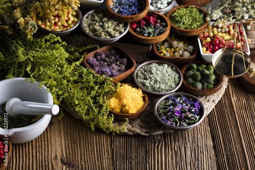 Valokuva  Assorted natural medical herbs and mortar