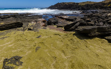 A Second (secret) Green Sand Beach Close To The Famous Papakolea Green Sand Beach Of Big Island, Hawaii.
