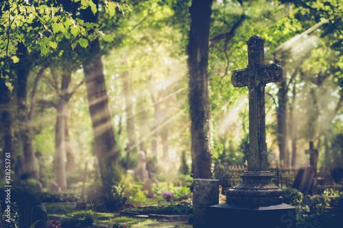 Fototapeta  Old cemetery. Selective focus.