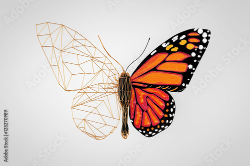 Poster Papillon Abstract Wired Low Poly Butterfly. 3d Rendering