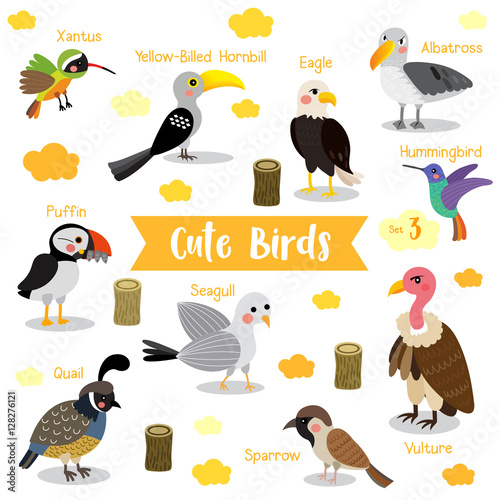 Valokuva  Cute Birds Animal cartoon on white background with animal name