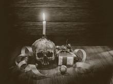 Still Life Skull And Gift