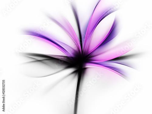 fioletowy-kwiat-projekt-streszczenie-tlo