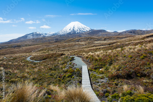 Fotografie, Tablou  Path to Mount Ruapehu and Tama Lakes, Tongariro National Park, New Zealand
