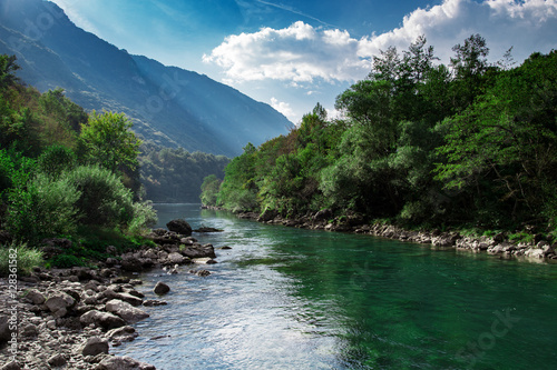 Photo sur Aluminium Riviere Mountain clear river and green forest, nature landscape