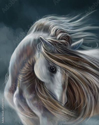 Fototapeta Лошадь obraz