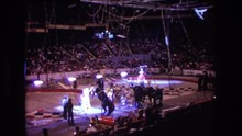 1974: A Stunt Horse At The Circus BOSTON