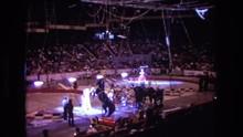 1974: A Stunt Horse At The Cir...